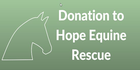 Donation to Hope Equine Rescue